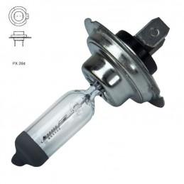 lâmpada H7 24V100W PX26D